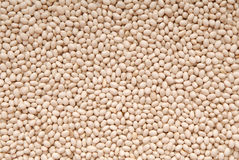 Texture background is out of white beans, heap of beans royalty free stock photo