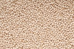 Texture background is out of white beans, heap of beans stock image