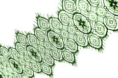 Texture, background, pattern. lace fabric. green. Stunning embroidered flowers bloom on the border along both edges, while. Sporadically grows through the stock photography