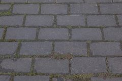 Texture, background. The pavement of granite stone. Paved roadway street. any paved area or surface. Old cobblestone road pavement. Texture, grass between stock photography