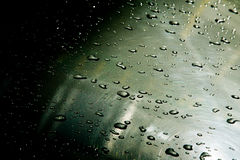 Texture background. raindrops on paintwork. Precipitation in the Stock Images