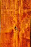 Texture Background of real wood Royalty Free Stock Image