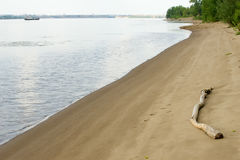 Texture, background. the sand on the beach. loose granular subst Royalty Free Stock Photos