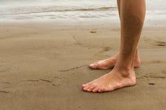 Texture, background. the sand on the beach. loose granular subst Stock Photography