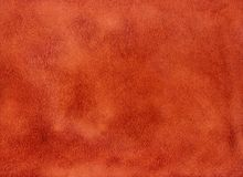 Texture and background of soft velvety skin, suede Stock Photos