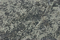 Texture, background, stone. Royalty Free Stock Images