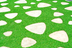 Texture background surface path artificial grass Stock Image