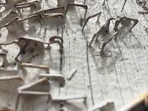 Texture background white peeled paint peeling grunge telephone pole rusty staples Stock Photos