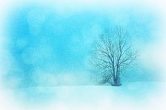 Texture, Background, Winter, Wintry Stock Images