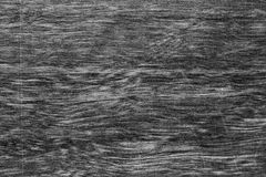 Texture background of the wood wall, black and white. Royalty Free Stock Images