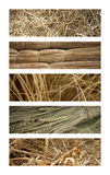 Texture and backgrounds Stock Images