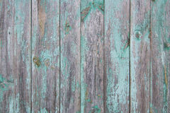 Texture backgrounds. Texture wood Stock Photos