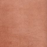 Texture of bakhtarma skin with little pores Royalty Free Stock Photo