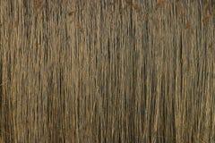 Texture bamboo cane Stock Photo