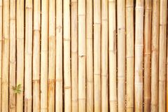 Texture bamboo fence,Natural background,light brown wooden wall. Close up Texture bamboo fence,Natural background,light brown wooden wall stock photo