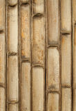 Texture of bamboo wall Royalty Free Stock Photo