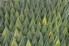 Texture of banana leaf handmade Royalty Free Stock Photo