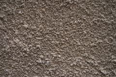 Texture of bark beetle plaster on the wall stock photos