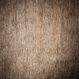Texture of bark wood Royalty Free Stock Images