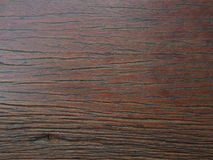 Texture of bark wood. Stock Images