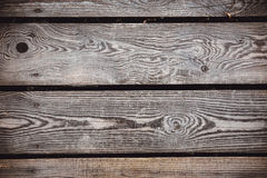 Texture of bark wood use as natural background Royalty Free Stock Image