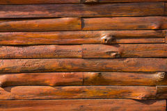 Texture of bark wood use as natural. Background Royalty Free Stock Image