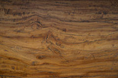 Texture of bark wood use as natural background Royalty Free Stock Photos