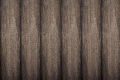 Texture of bark wood use as natural background Stock Photography