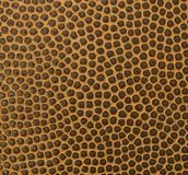 Texture of basketball ball Stock Images
