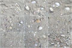 Texture of beach sea sand Stock Photography