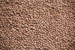 Texture of beans. A portion of Brazilian beans forming a texture Stock Photo