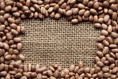 Texture of beans. Brazilian bean texture with space for text Stock Photography