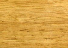 Texture of the beech. The wooden surface of the beech, close-up Stock Image