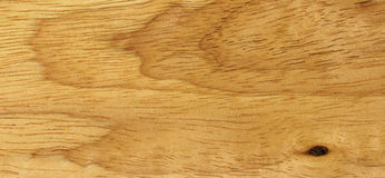 Texture of the beech. The wooden surface of the beech, close-up Royalty Free Stock Images