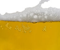Texture of beer foam Stock Photos