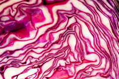 Texture of the beet Royalty Free Stock Photos