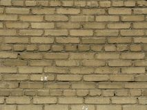 Texture of beige brick wall Stock Image
