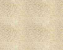 Texture beige de tapis photo libre de droits
