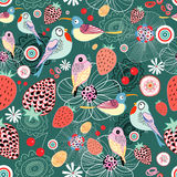 Texture of berries and birds Stock Image