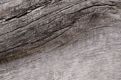 Big old gray wooden board with dark cracks Royalty Free Stock Photo