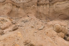 The texture of the big sandy cliff with rocks Royalty Free Stock Photography