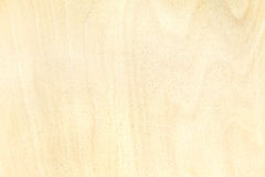 Texture of birch plywood board natural pattern background Stock Photography