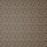 Texture. It is black brown texture Royalty Free Stock Photography