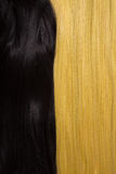 Texture of black and golden blond hair Stock Photos