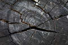 Texture of black wood logs background with crack damage of aged Stock Photos