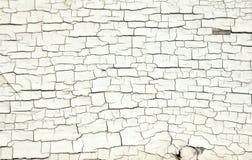 Texture blanche criquée de peinture sur le vieux bois Images libres de droits