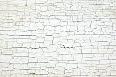Texture blanche criquée de peinture sur le vieux bois Image libre de droits