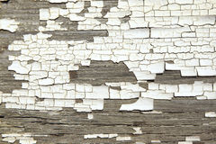 Texture blanche criquée de peinture sur le vieux bois Photos libres de droits