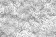 Texture blanche de tapis de tapis à longs poils Photographie stock