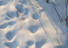 Texture blanche et bleue de neige de fond Image libre de droits
